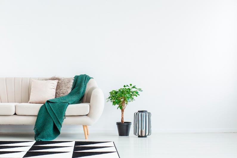 pintura blanco puro piso