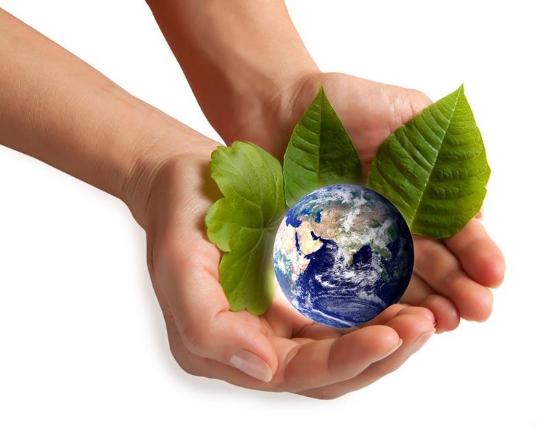 cuidemos nuestro medio ambiente