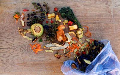 La comida que tiramos y lo que podríamos hacer con ella