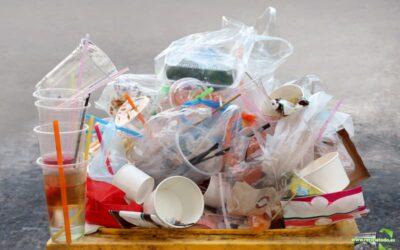 Aprende a diferenciar los plásticos verdaderos